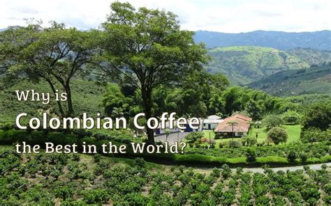 Why Is Colombian Coffee The Best In The World? Dare2go