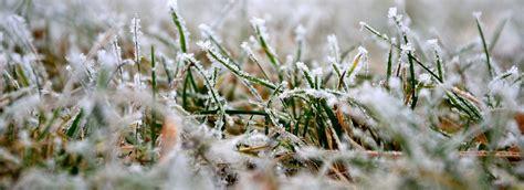 Rasenpflege Vor Dem Winter by Rasenpflege Im Bzw Nach Dem Winter Rasen Pflegen Im Februar