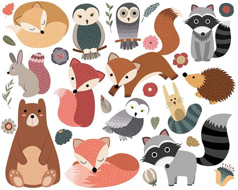 Woodland Critters Clip Art Set Of 30 300 Dpi Png Jpg And