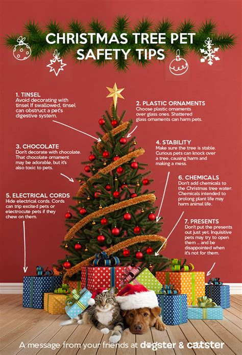 infographic keep your pets safe around the christmas tree