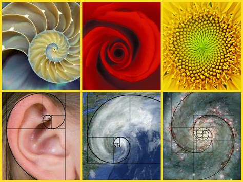All Things Science: Art (& a Little Bit of Math) All