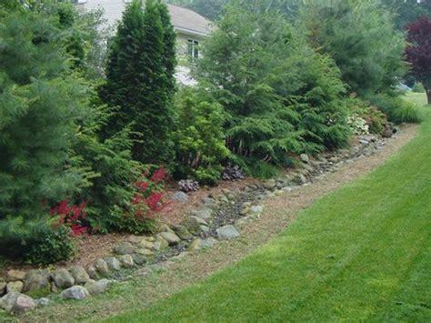 landscape privacy privacy backyard landscaping garden landscaping pinterest