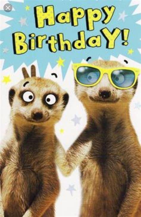 pin  sandy binder  memes birthday wishes funny