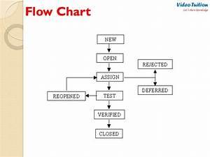 Software Testing - Defect  Bug Life Cycle