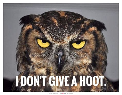 I Dont Give A Quotes I Don T Give A Hoot Picture Quotes