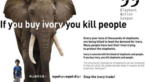 study documents funding link  elephant poaching