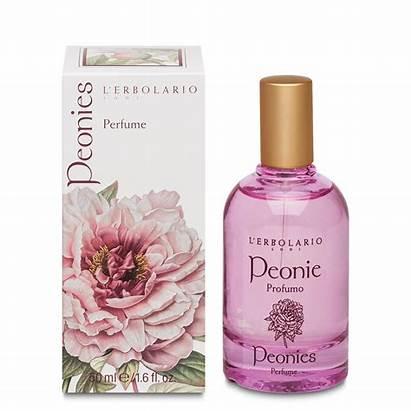 Perfume Peonies Ml Fragrance Bouquet Per