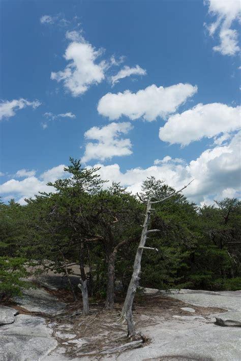 Photo Gallery: Stone Mountain State Park