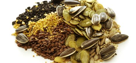 cuisine soja les graines oléagineuses valpiform