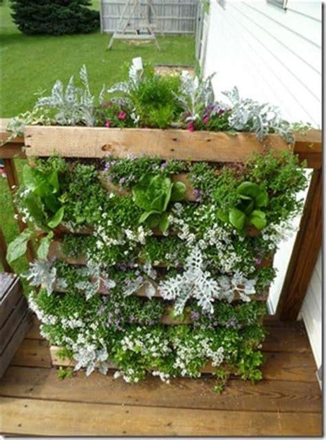 diy pallet herb garden ideas  today pallets designs