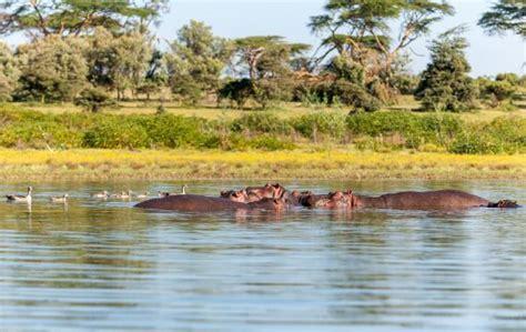 Lake Chad  Chad