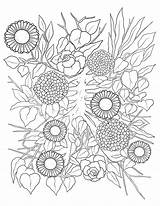 Coloring Flower Bed sketch template