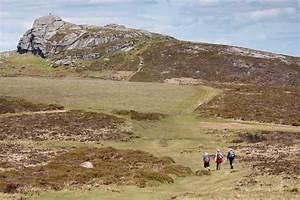 Walking For Health - Best Walks On Dartmoor