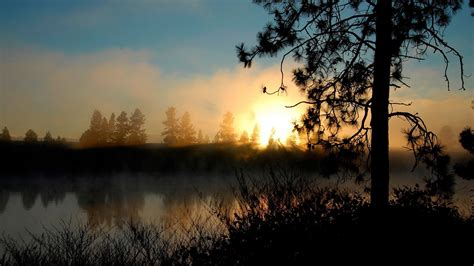 landscape sunset trees water wallpapers hd desktop