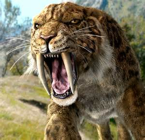 Of the Stone Age Animals Saber Cat