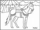 Coloring Horse Printable Pages Printables Cartoon Cartoons Popular Library Clipart Coloringhome sketch template