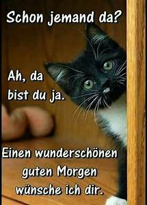 Guten Morgen Tierbilder : 4580 best images about guten morgen on pinterest good morning coffee good morning beautiful ~ Frokenaadalensverden.com Haus und Dekorationen