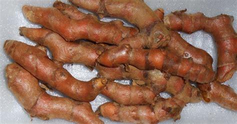 comment cuisiner le gingembre frais comment utiliser le curcuma en poudre en cuisine 28 images curcuma bio en poudre 233 pice