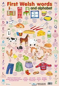My Alphabet Chart Posters Uk First Welsh Words Wholesale Wall Posters