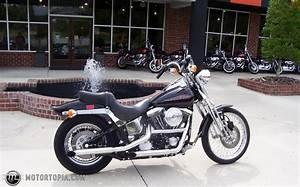Harley Davidson Wiring Diagrams Fuse 3520 Archivolepe Es