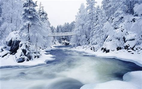 3d Winter Wallpaper by White Snow Fall In 3d Wallpapers 3d Wallpapers