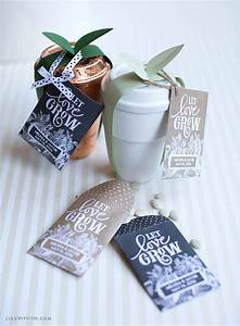 Seed packet wedding favors lia griffith for Seed packet wedding favors