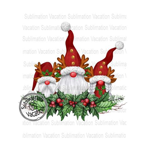 Vector pattern withn christmas gnomes royalty free illustration. Reindeer Gnomes in Holly, Sublimation Design, Gnomes ...