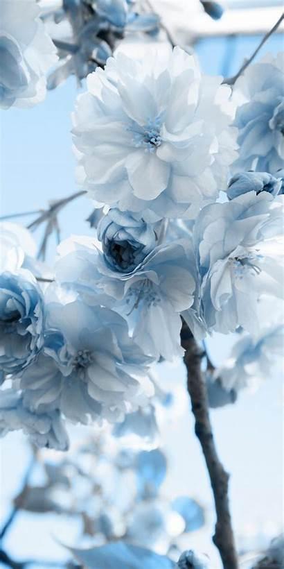 Blau Pastell Hintergrundbilder Quotes