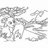 Goat Coloring Mountain Pages Printable Cute Getcolorings Getdrawings sketch template