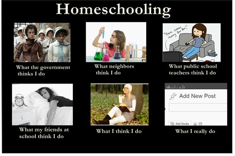 Homeschool Memes - so you think you want to homeschool vintage lace
