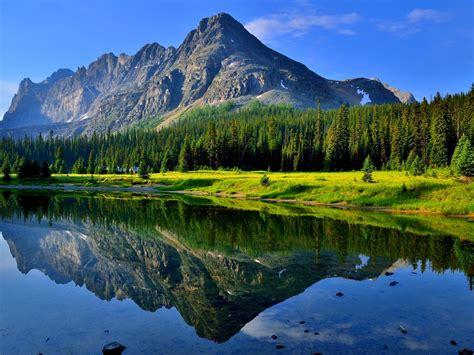 Hd Wallpaper Morning Summer Reflection Grass Lake Water ...