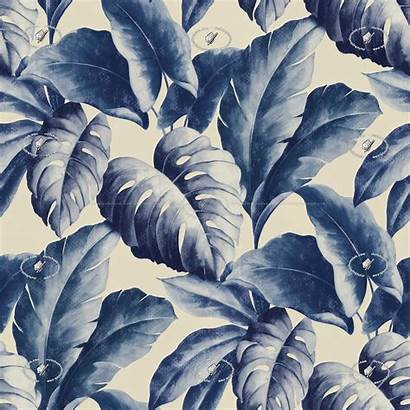 Seamless Texture Tropical Leaves Textures Various Patterns
