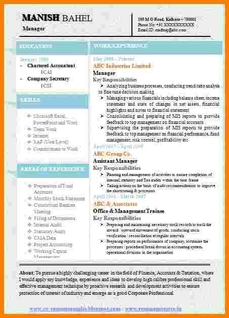 Resume Template Libreoffice by 9 One Page Resume Template Free Professional