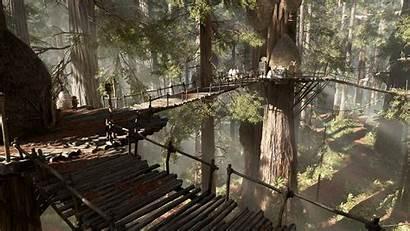 Ewok Village Endor Wars Tree Redwood Ewoks