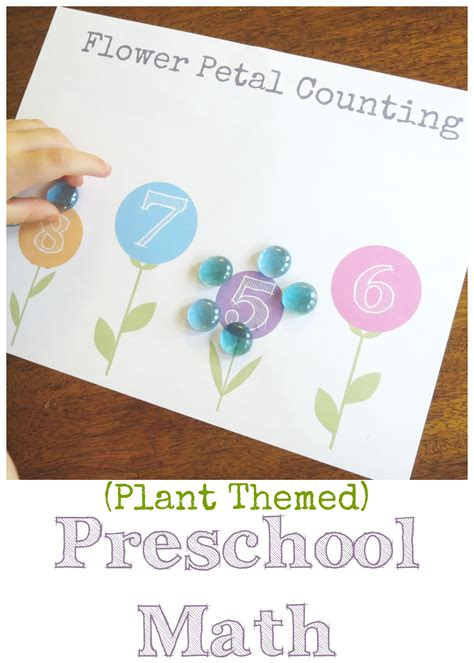 plant theme preschool math flower petal counting free 977 | Plant themed preschool math