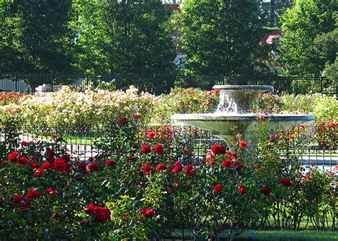 san jose municipal garden on the