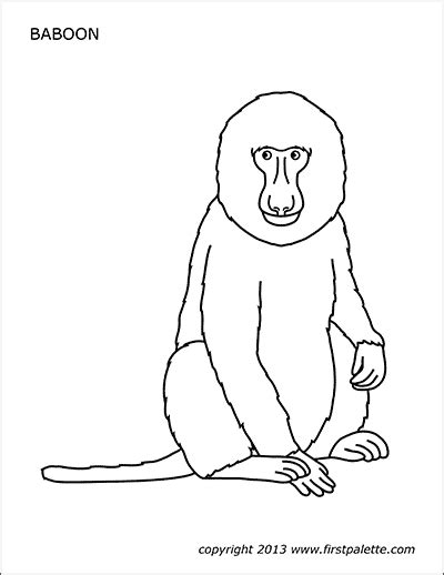 animal printables  printable templates coloring pages firstpalettecom