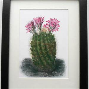 best succulent painting products on wanelo With best brand of paint for kitchen cabinets with succulent wall art kit