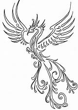 Phoenix Drawing Tattoo Outline Peacock Coloring Drawings Line Sketch Fenix Designs Tattoos Pages Tribal Arm Simple Henna Castro Leigha Getdrawings sketch template