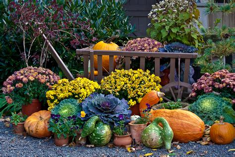 Fall Scenes with Pumpkins