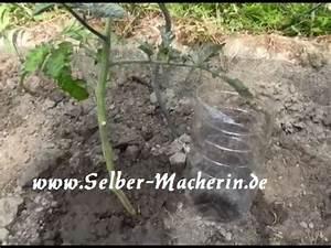 Pflanzen Bewässern Mit Plastikflasche : tutorial 3 blumentopf mit bew sserungssystem bauer doovi ~ Markanthonyermac.com Haus und Dekorationen