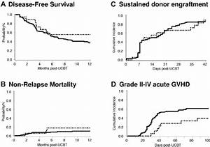 Clinical Outcomes Of Patients After Nonmyeloablative