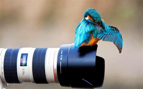 creative photography hd wallpapers whatsapp status