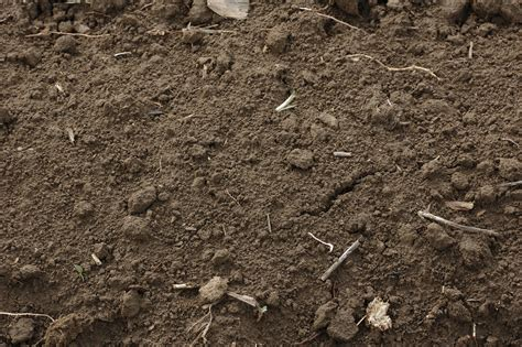 is mulch toxic toxic soil storm water solutions