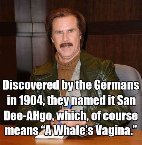 Will Ferrell Meme Origin - ron burgundy in anchorman the legend of ron burgundy 2004 13 will ferrell one liners we all