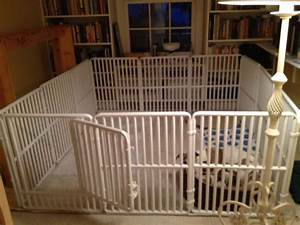 floor surface for a puppy pen general border collie With big dog kennels for inside
