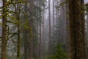 Random Oregon Photos of the Day - dav.d photography Oregon