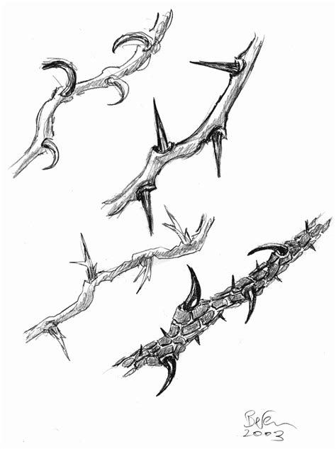 Pin by Melissa Moore on thorns | Thorn tattoo, Etching tattoo, Tattoo sketches