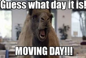 10 Memes All People Who Are Getting Ready to Move With ...