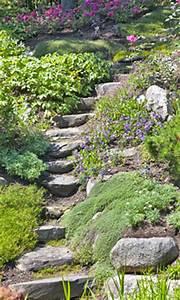 Steilen Hang Bepflanzen : einen steingarten selber anlegen ~ Lizthompson.info Haus und Dekorationen